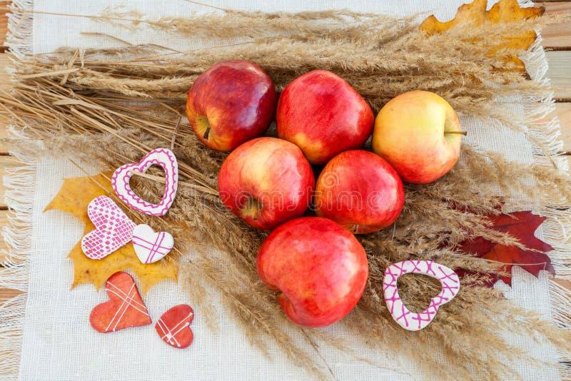 Ainda vida de maçãs maduras vermelhas nos spikelets imagens de stock royalty free