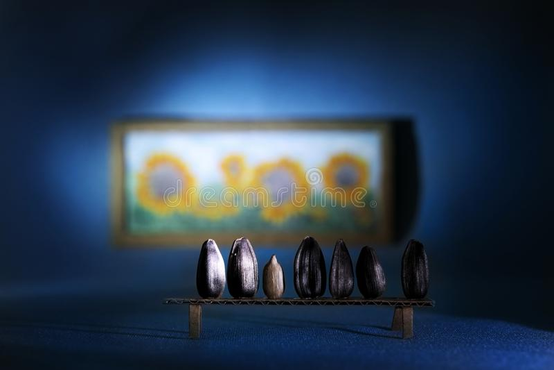 Ainda-vida de sementes de girassol fotografia de stock royalty free