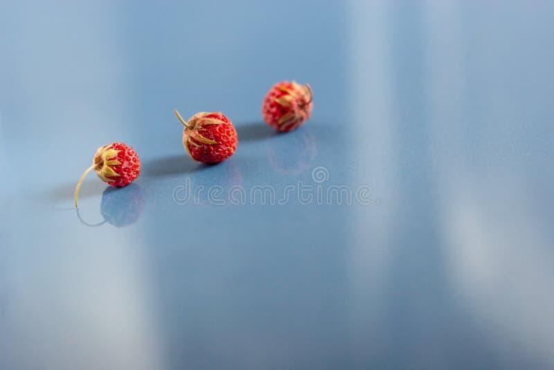 Ainda vida de três morangos em azulejos azuis com textura da poeira Vista superior Foco seletivo imagens de stock royalty free