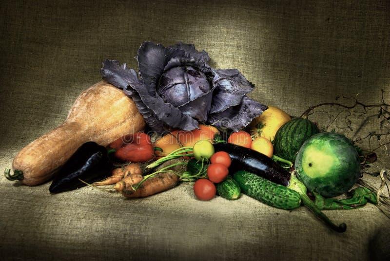 Ainda-vida Dos Vegetais Fotografia de Stock Royalty Free