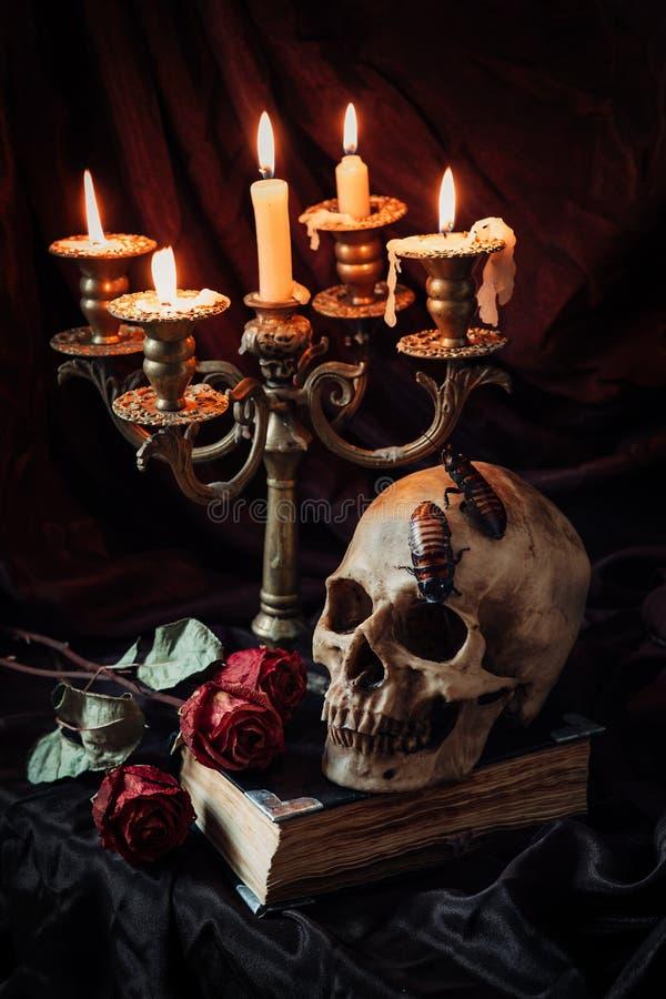 Ainda vida gótico com crânio fotografia de stock royalty free