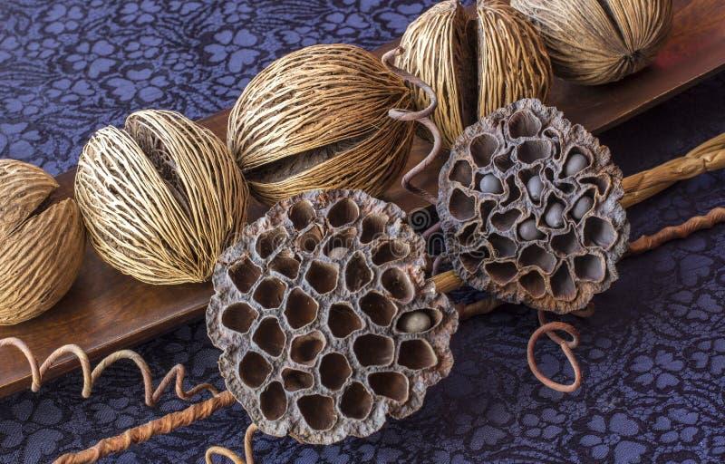 Ainda vida - ikebana de lótus e de bolas secos do coco Fundo de matéria têxtil foto de stock royalty free