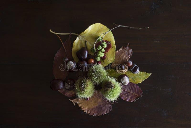 Ainda vida outonal com folhas, castanhas e bagas, no fundo de madeira escuro rústico fotos de stock
