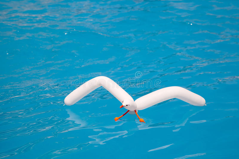 Air balloon seagull floating in aqua water stock photography