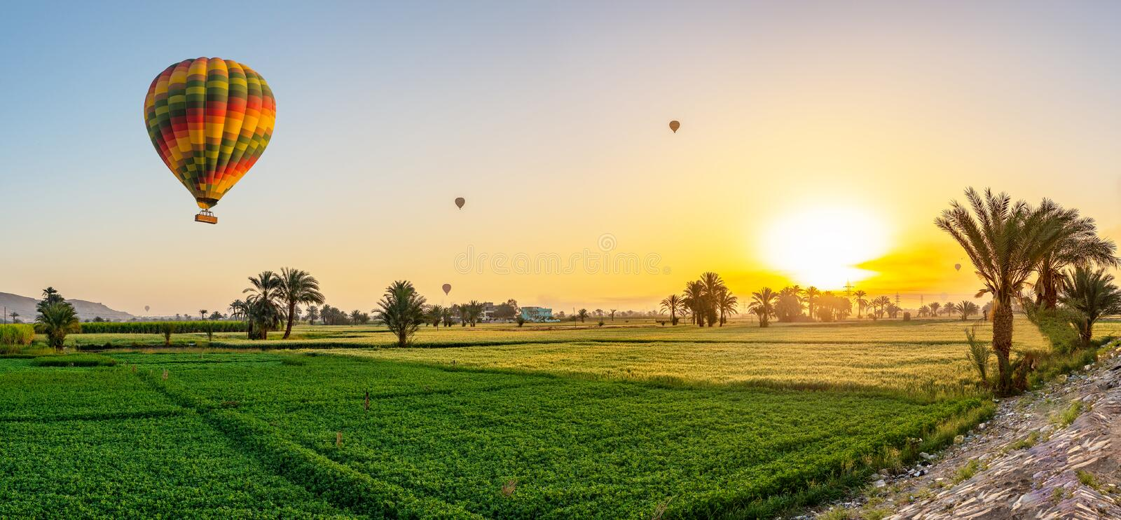 Air balloons above the field stock image