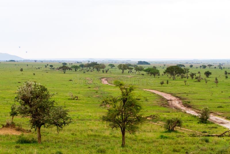 Air balloons in Serengeti National Park royalty free stock photo