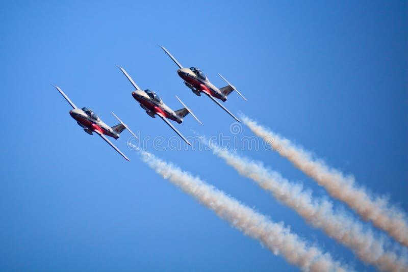 Air Canada showsnowbirds 2009 toronto arkivfoton