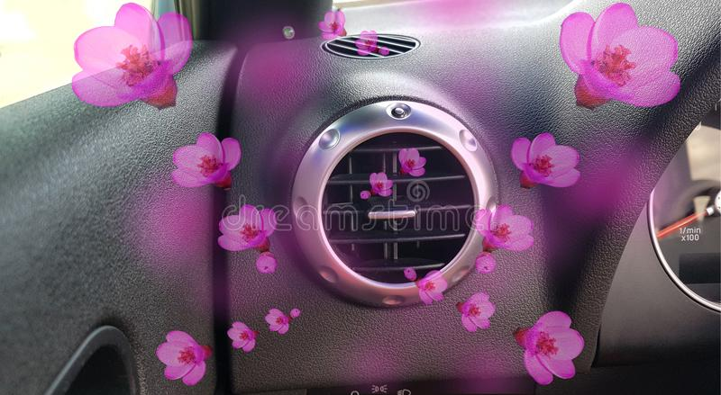 Air conductors car air condition aroma flowers. Pink royalty free stock image