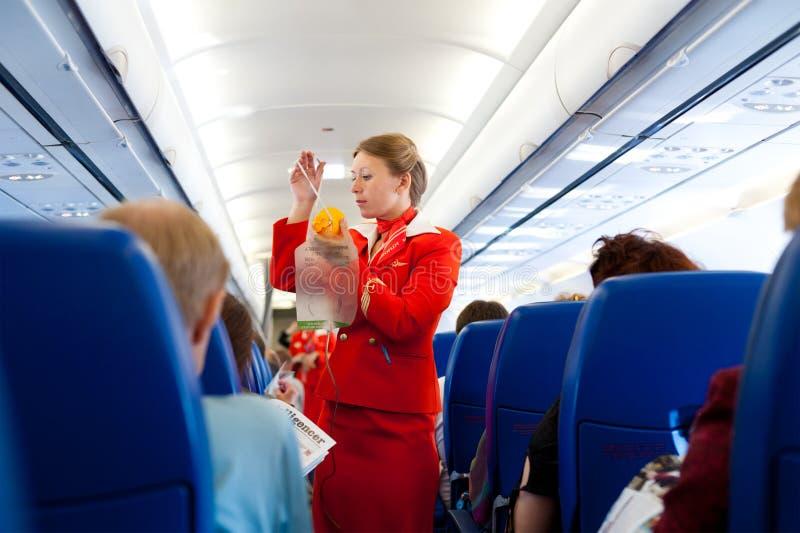 Air hostess at work royalty free stock image