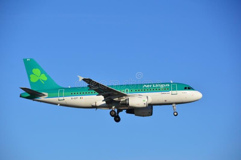Air Lingus - посадка Ирландского плоская стоковые изображения rf