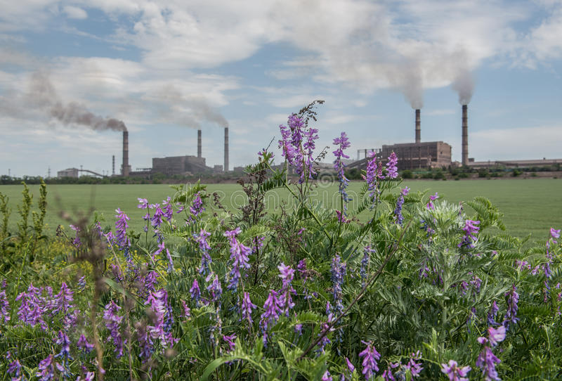 Download Air pollution stock photo. Image of flower, nature, pollution - 42083486