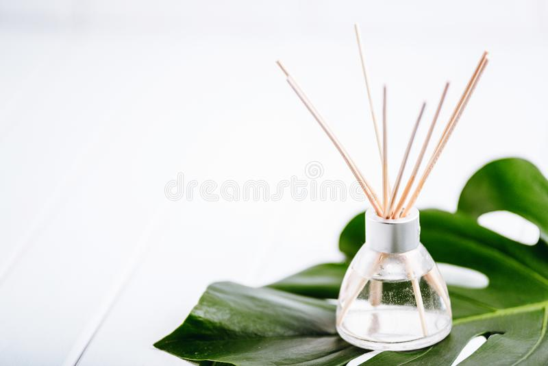 Air refresher bottle and leaf of a monstera with white background. Copyspace for your text royalty free stock images