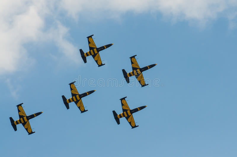 Download Air Show 2013, Radom 30 August 2013 Editorial Stock Image - Image: 33496774