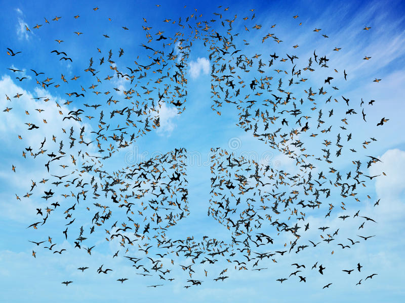 Air travel concept. Flock of flying birds organized in the shape of passenger airplane jet. Aviation transport and transportation symbol royalty free stock photo