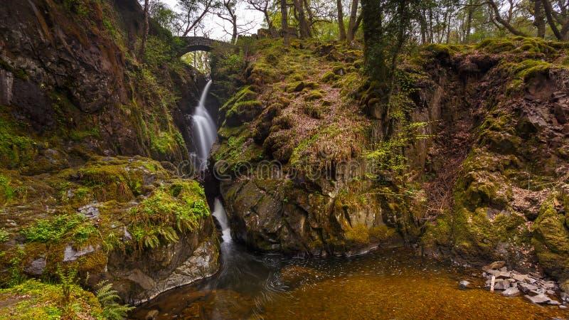 Aira-Kraft-Wasserfall, Cumbria, England, Vereinigtes Königreich lizenzfreies stockfoto