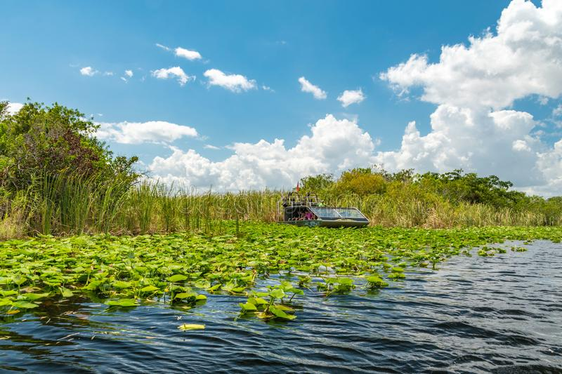 Airboat tour in Eveglades national park, Florida, USA. Air boat tour in Eveglades national park, Florida, USA stock image