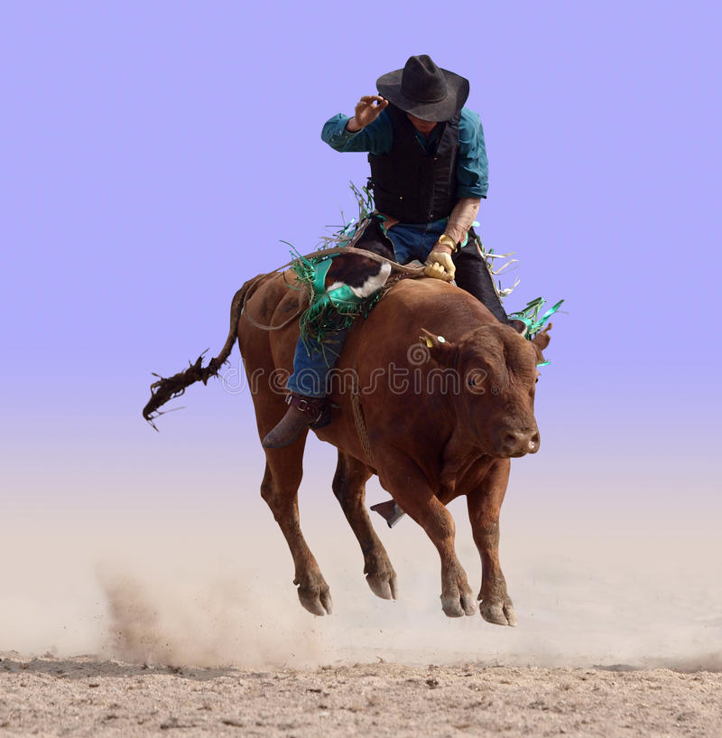 Airborne on a Bull royalty free stock photography