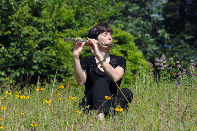 Download Airborne Music stock image. Image of instrument, flute - 18180907