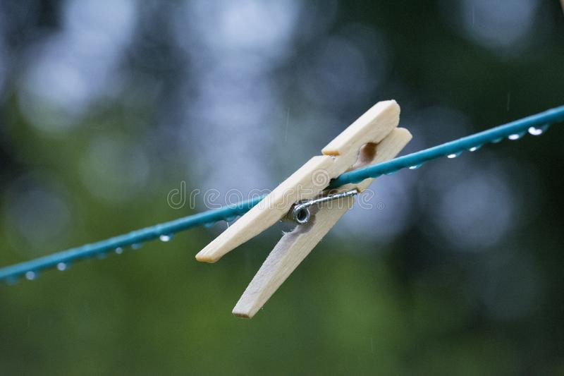 Aircraft, Airplane, Wing, Insect stock photography
