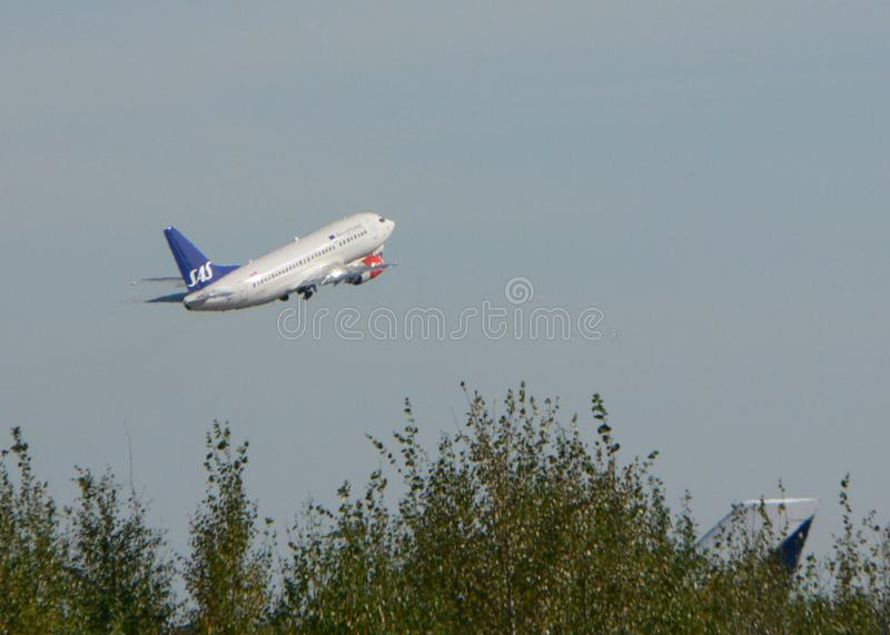 Aircraft over Wood royalty free stock photo