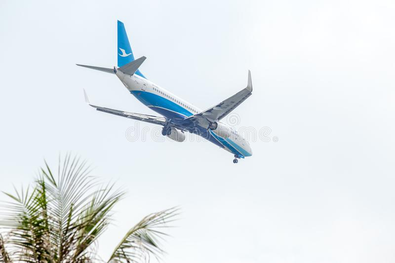 Aircraft or Plane of Xiamen Airlines or Airways on the sky landing to Suvanabhumi airport with blurry top part of coconut tree on royalty free stock photos