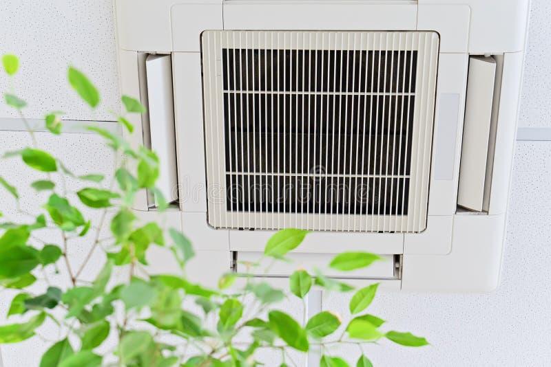 Aire acondicionado del techo en oficina moderna o en casa con las hojas verdes de los ficus fotografía de archivo