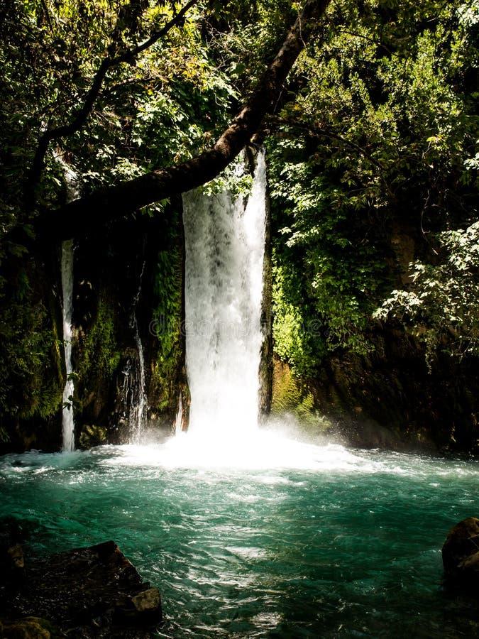 Aire de loisirs de parc de pierres de chutes Ressort de rivière de Hermon image stock