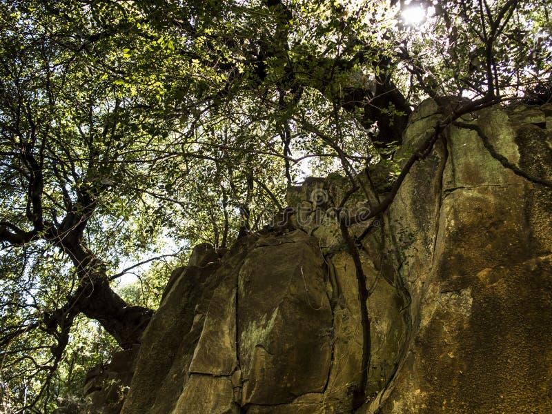 Aire de loisirs de parc de pierres de chutes Ressort de rivière de Hermon photographie stock libre de droits