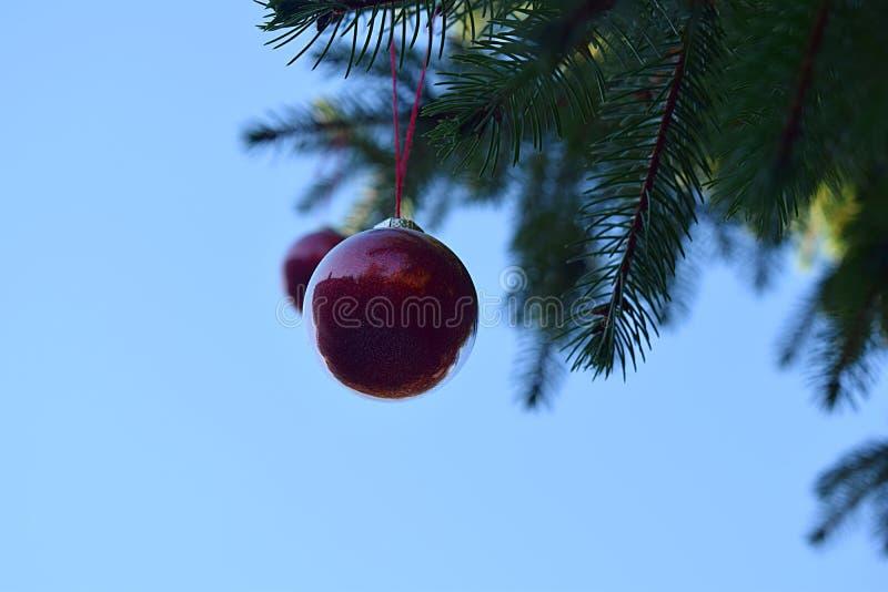 Aire libre festivo del árbol de navidad con las bolas imagen de archivo
