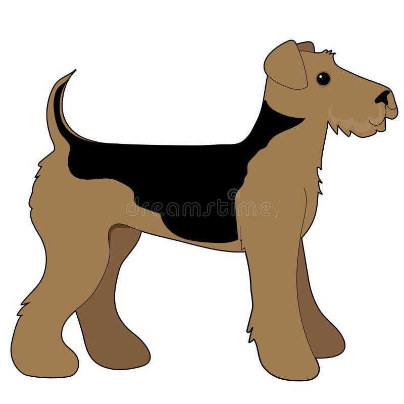 Airedale Terrier illustrazione di stock