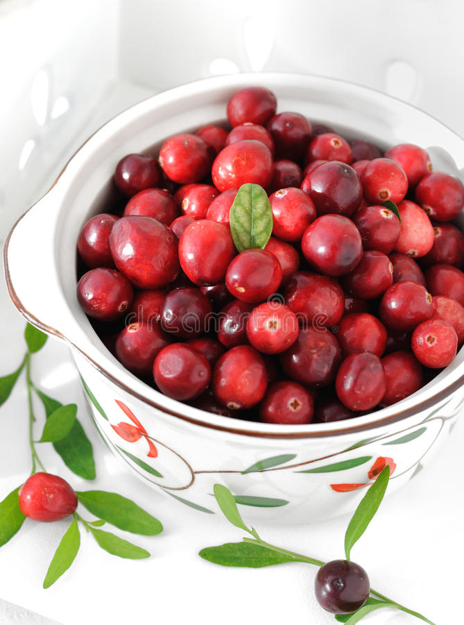 Download Airelas imagem de stock. Imagem de saudável, fruta, bagas - 16857473