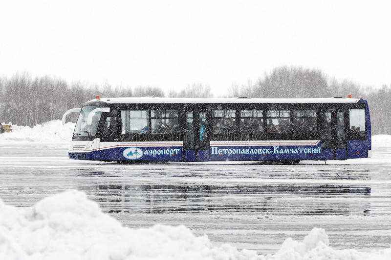 Airfield bus labeled. KAMCHATKA, RUSSIA - MARCH 19, 2015: Airfield bus labeled Airport Petropavlovsk-Kamchatsky transports passengers at the airport of royalty free stock image