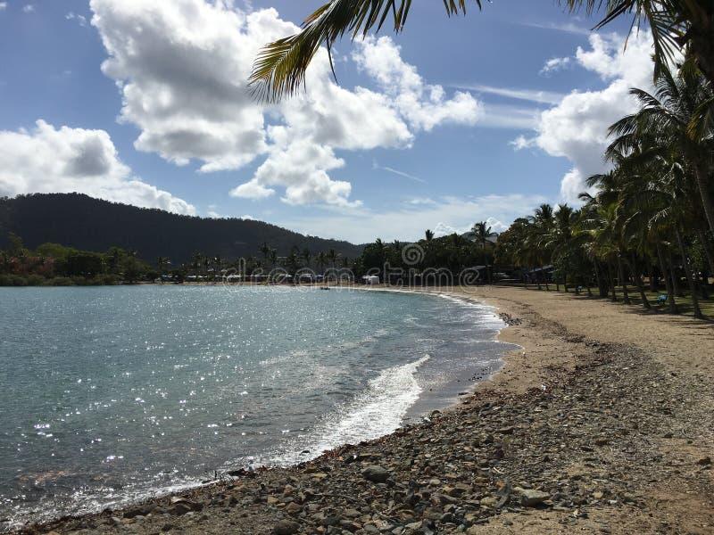 airlie strand zonnige dag royalty-vrije stock fotografie