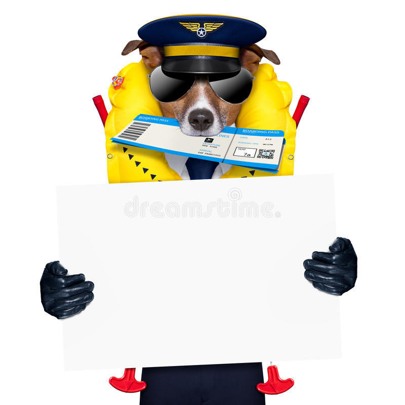 Airline pilot flight attendant check in ticket royalty free stock images