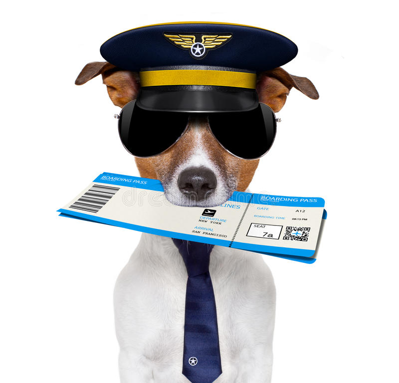 Airline pilot flight attendant check in ticket stock photos