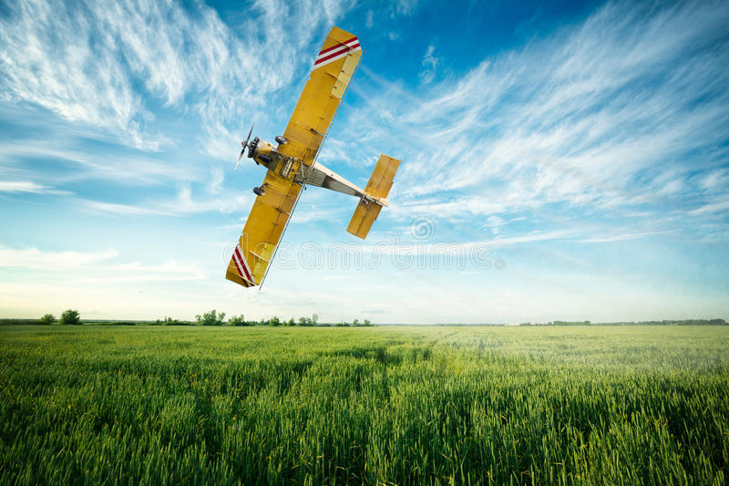 airplane flies over a wheat field spraying fungicide and pesticide stock image