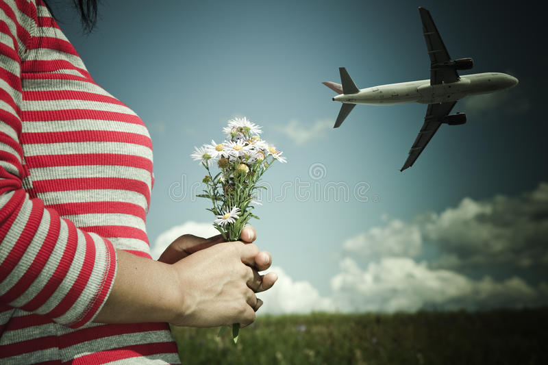 Airplane and flower stock image