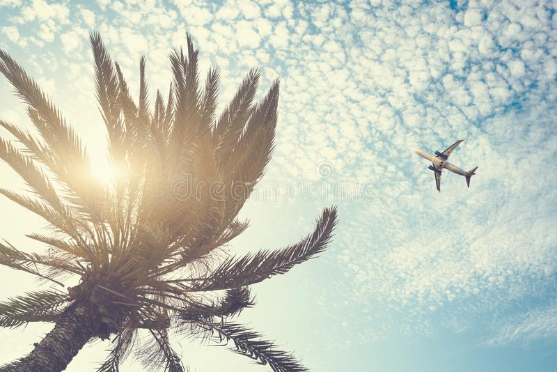 Airplane flying over tropical palm tree on cloudy sunset sky background. Summer and travel concept royalty free stock image