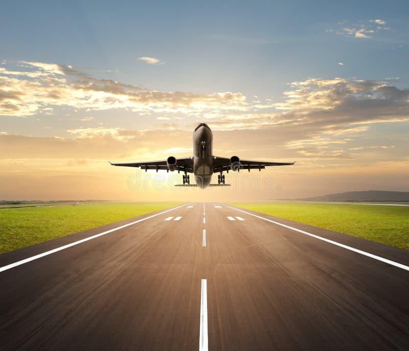 Download Airplane landing stock image. Image of aircraft, aeroplane - 24497847