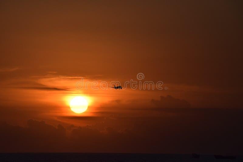 Airplane during landing at sunset stock photos