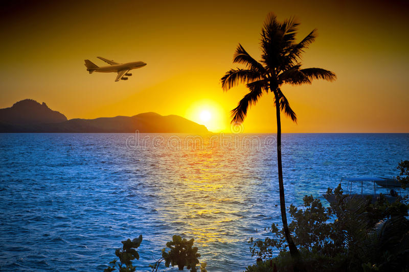 Airplane Ocean Palm Tree Tropical Sunset stock photo