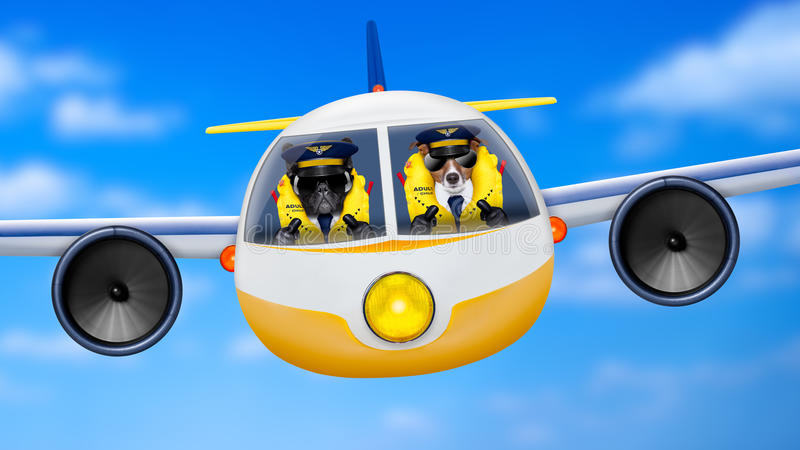 Airplane pilot dogs. Pilot and copilot dogs in cockpit cabin flying , landing or departing for a summer vacation holiday with funny airplane stock image