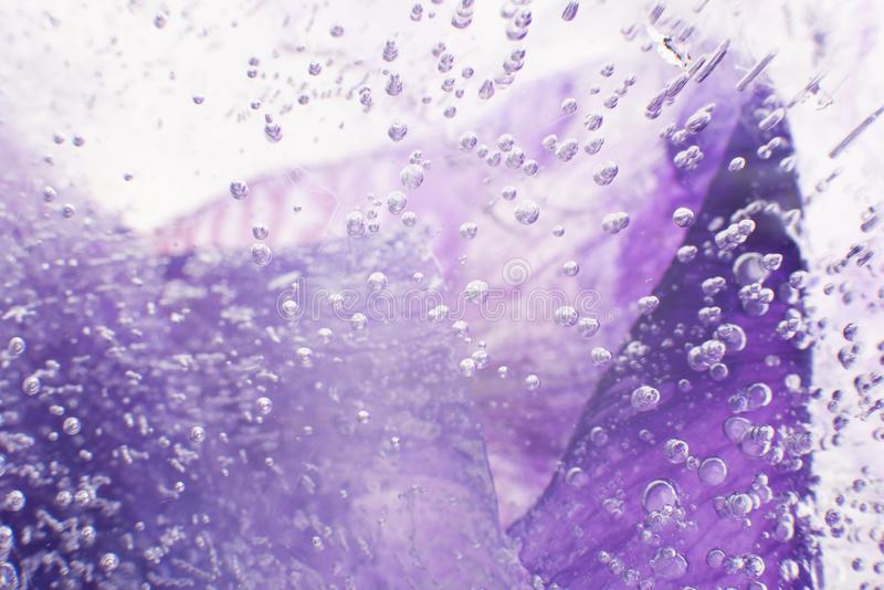 Airy delicate bubbles flowing through ice with purple colors underneath. Ideal for background stock images