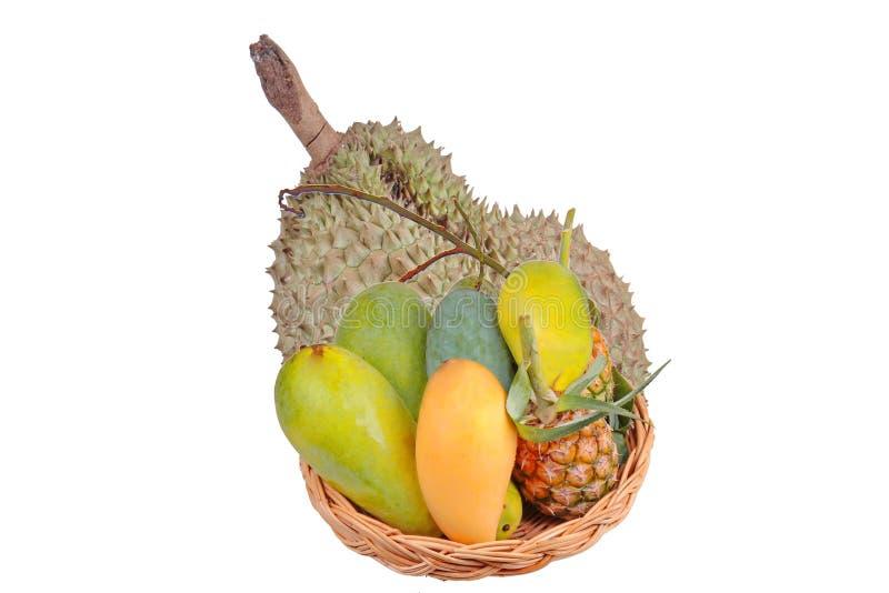 Aislado de la fruta local tailandesa como los mangos verdes, el mango maduro, el mango dulce, el Durian de Montong y piña en la c imágenes de archivo libres de regalías