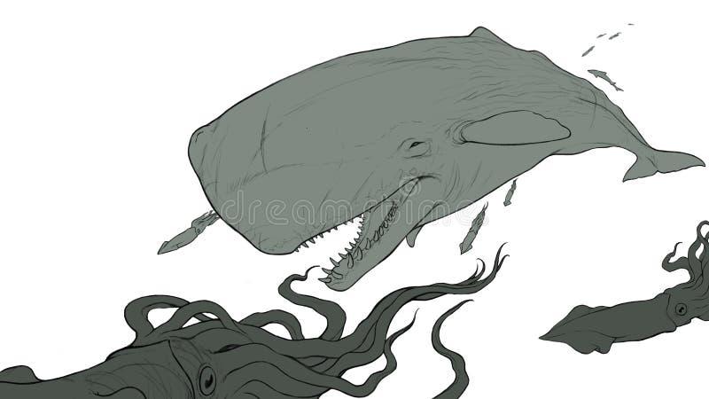 Aislante plano de esperma de la ballena del bosquejo realista grande del ejemplo imagenes de archivo