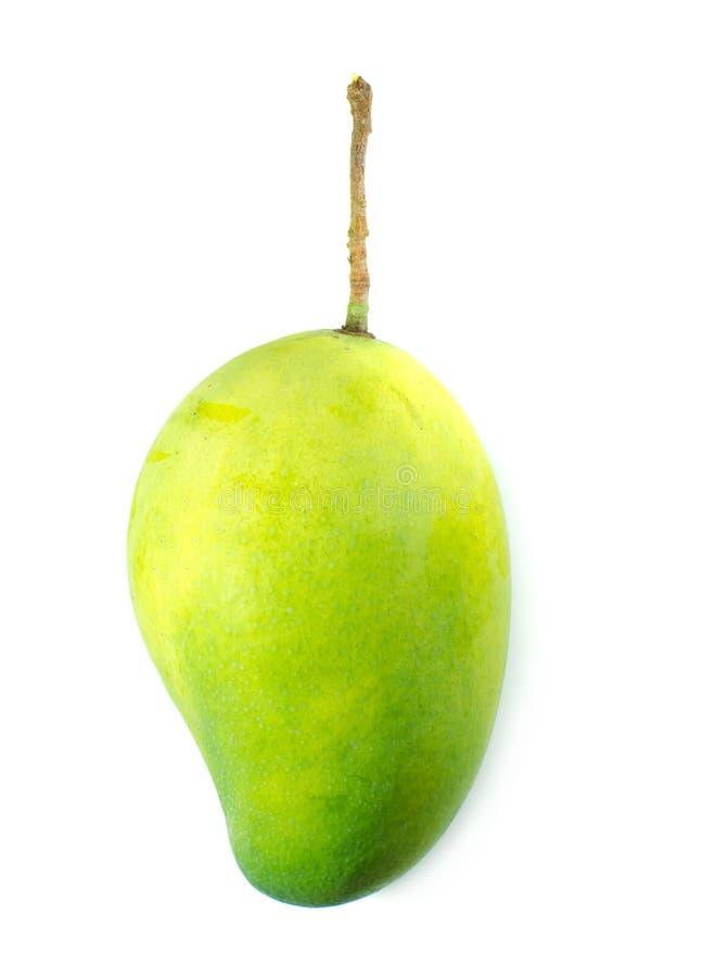 Aislante verde del mango en el fondo blanco imágenes de archivo libres de regalías
