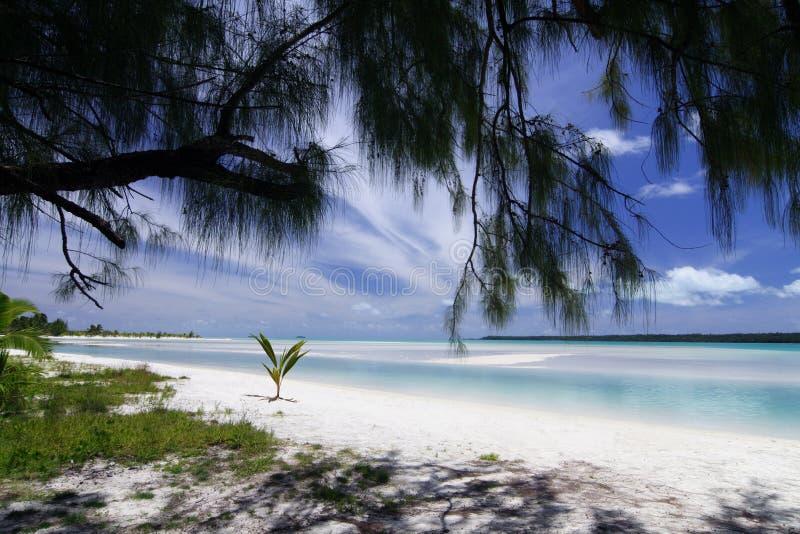 Aitutaki Lagune lizenzfreies stockfoto