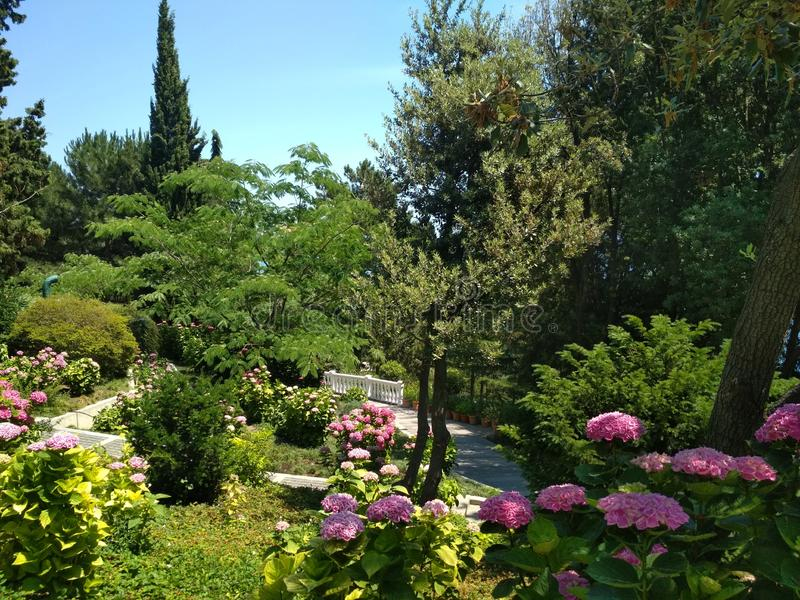Aivazovskypark in de Krim stock afbeelding