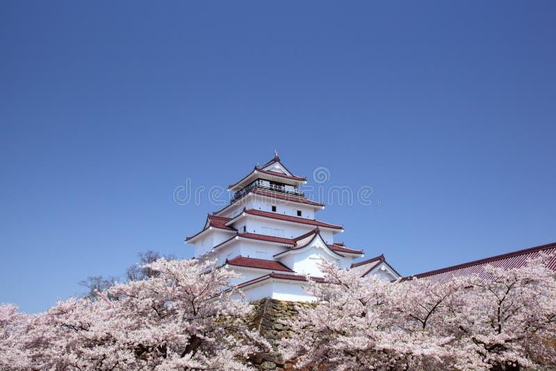 Aizuwakamatsu slott och körsbärsröd blomning royaltyfri bild