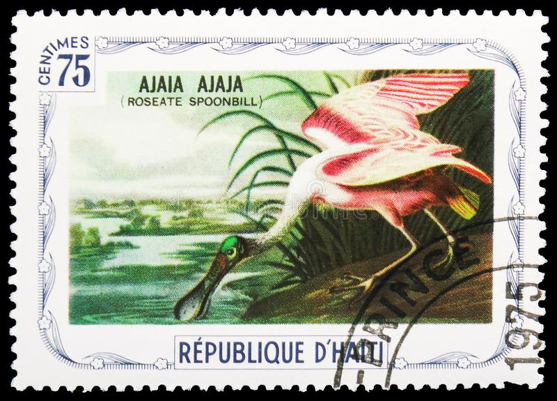 Ajala de Ajala (spoonbill róseo), serie dos pássaros, cerca de 1975 fotografia de stock